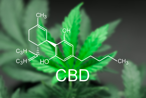 Advantages of Smoking CBD Flower
