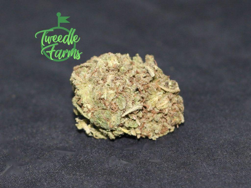 tweedle farms hemp flower 2