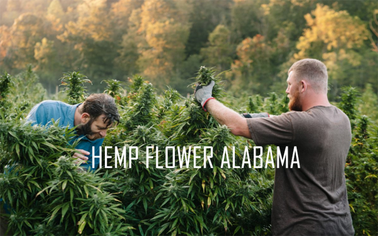 hemp-flower-in-alabama