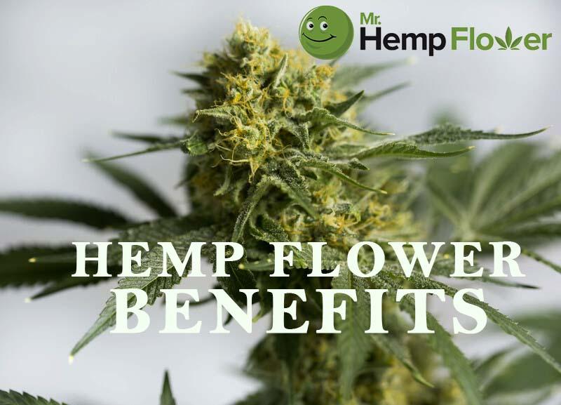 Mr. Hemp Flower 2